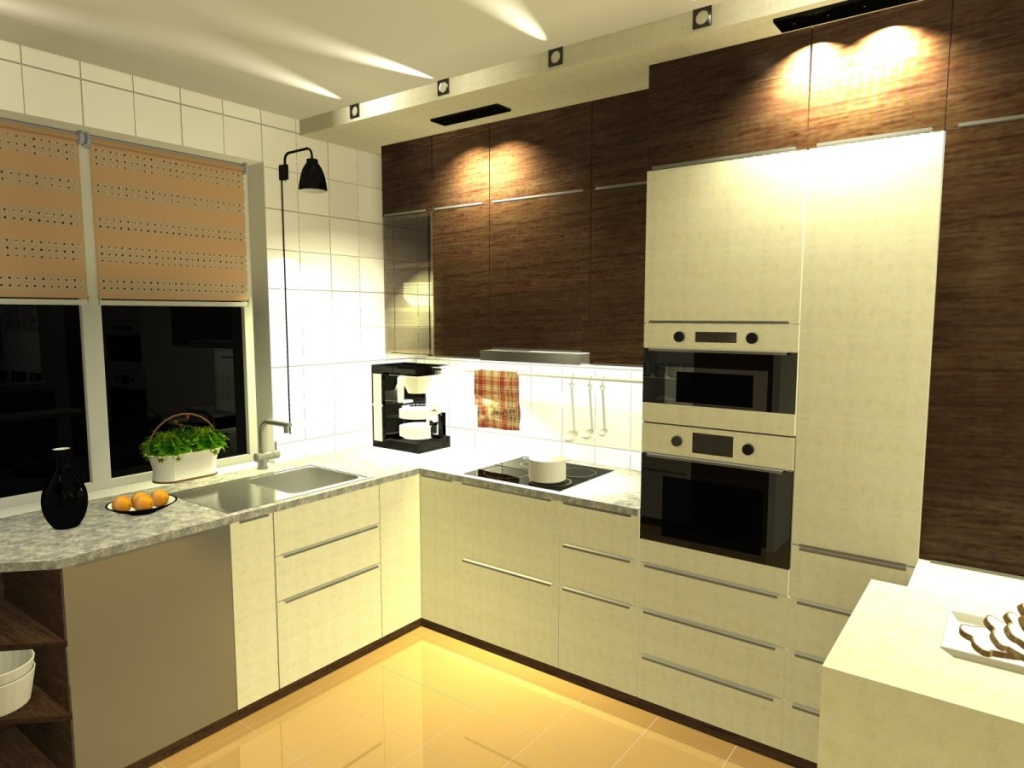 Projekt kuchni - REXI